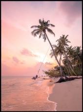 Photographie de palmiers sur le bord de la plage et l'océan en arrière-plan