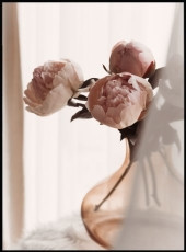 Photographie de trois pivoines roses dans un vase fumé rose.